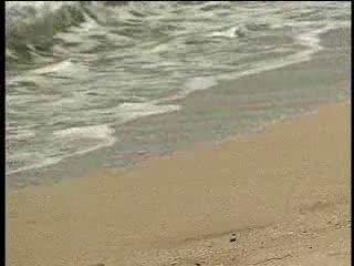 Anale sex op het strand, hup die lul in die anus